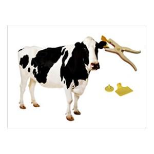 RFID Animal Tags Printing